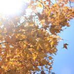 秋のアウトドアでの紫外線対策5つ!ばっちり対策して、行楽シーズンを満喫しましょう。