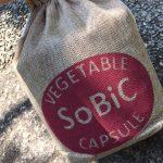 【口コミ】自宅で簡単ガーデニング!SoBiC(ソビック)オーガニックプランターを使ってトマトを育ててみるよ。